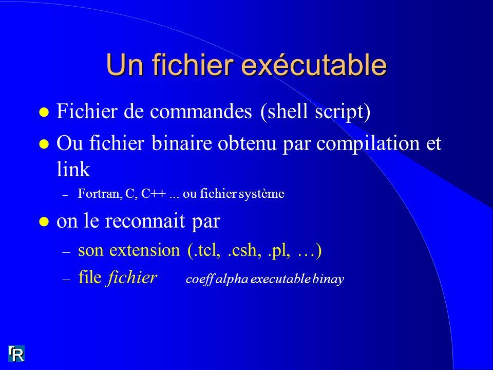Un fichier exécutable Fichier de commandes (shell script)