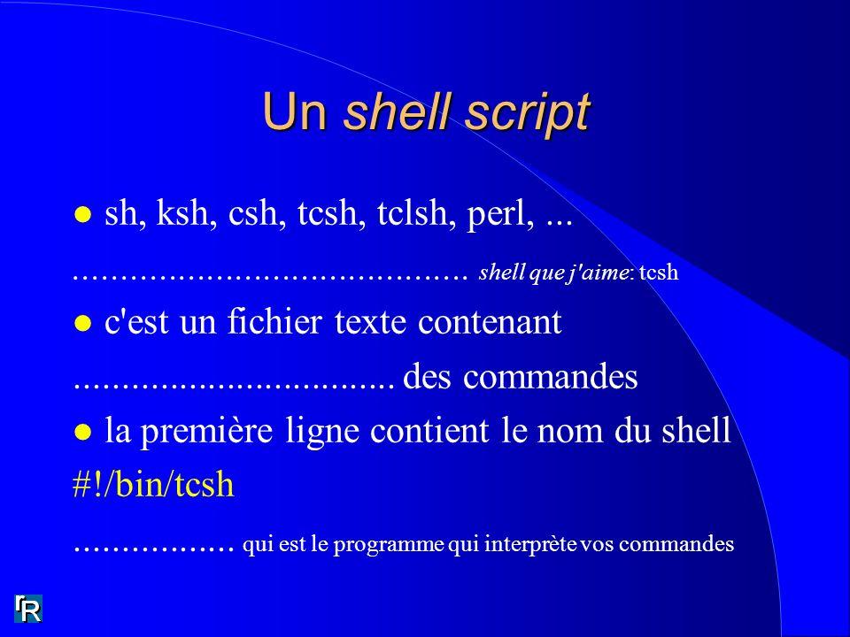 Un shell script sh, ksh, csh, tcsh, tclsh, perl, ...