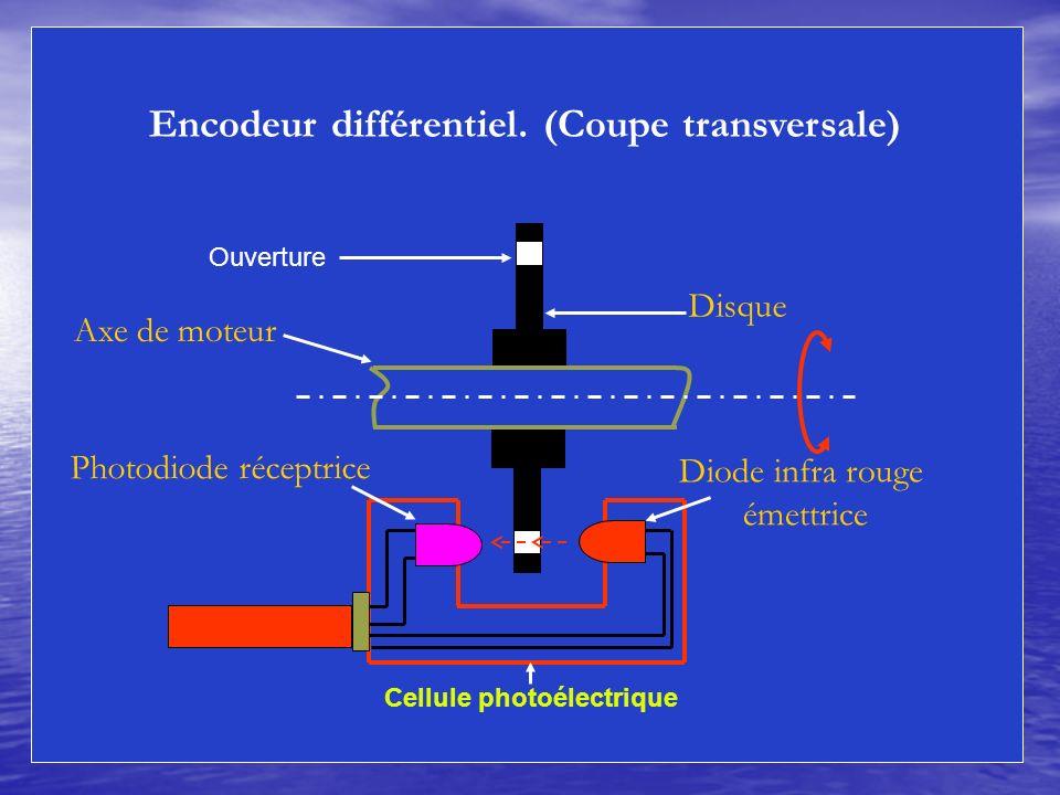 Encodeur différentiel. (Coupe transversale) Cellule photoélectrique