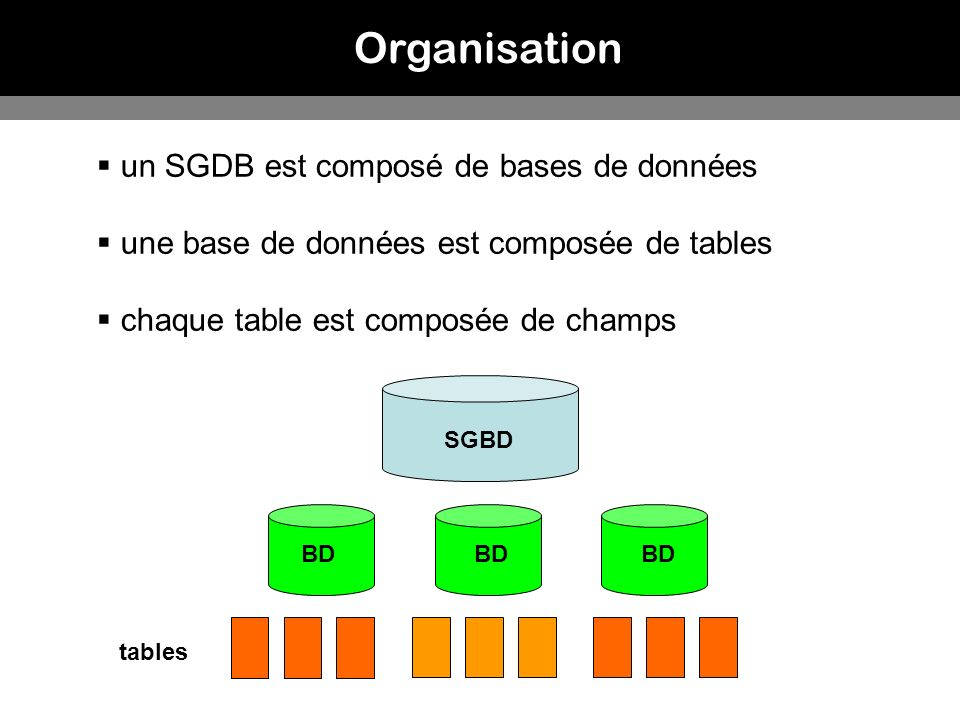 Organisation un SGDB est composé de bases de données