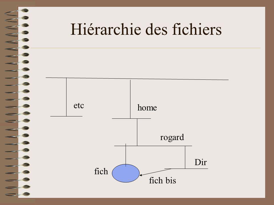 Hiérarchie des fichiers