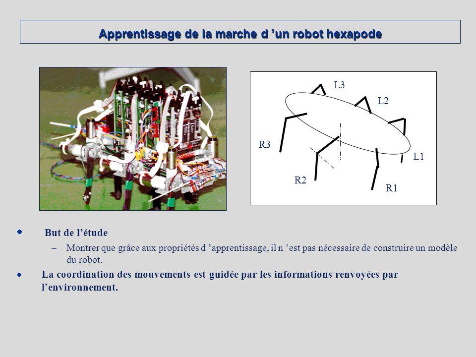 Apprentissage de la marche d 'un robot hexapode