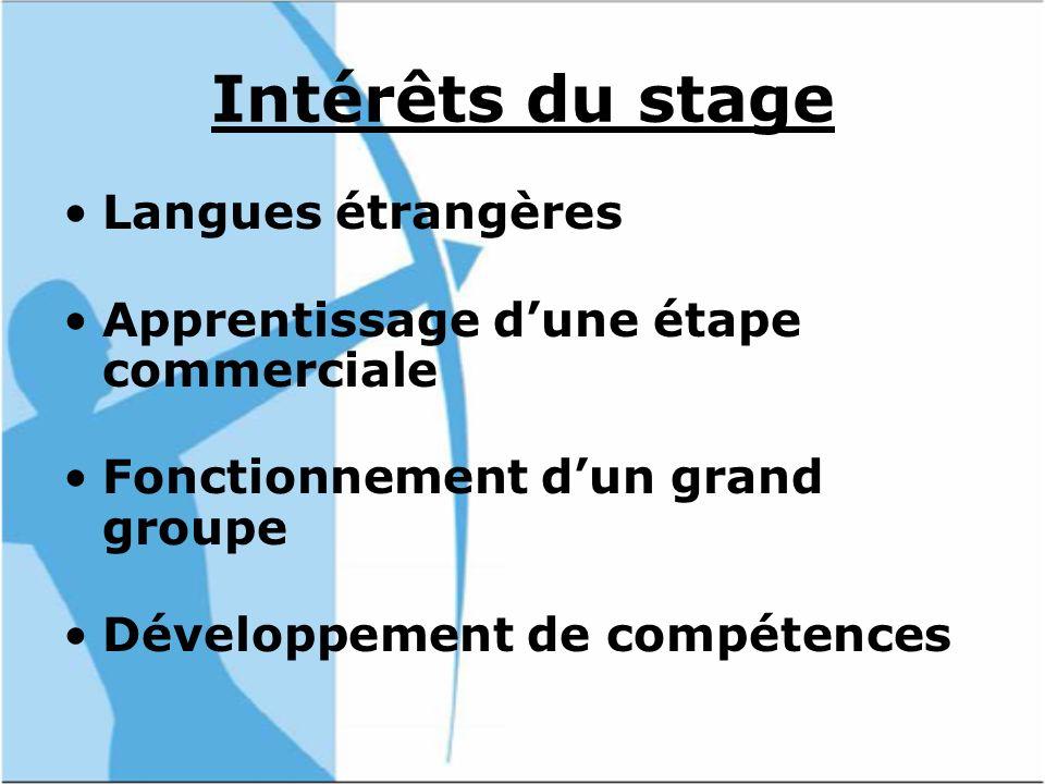 Intérêts du stage Langues étrangères