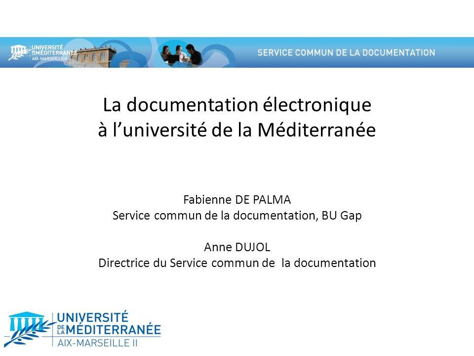 La documentation électronique à l'université de la Méditerranée