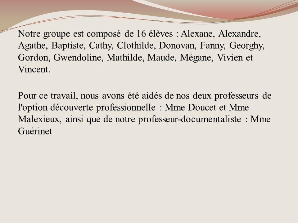 Notre groupe est composé de 16 élèves : Alexane, Alexandre, Agathe, Baptiste, Cathy, Clothilde, Donovan, Fanny, Georghy, Gordon, Gwendoline, Mathilde, Maude, Mégane, Vivien et Vincent. 