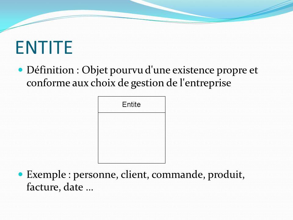 ENTITE Définition : Objet pourvu d une existence propre et conforme aux choix de gestion de l entreprise.