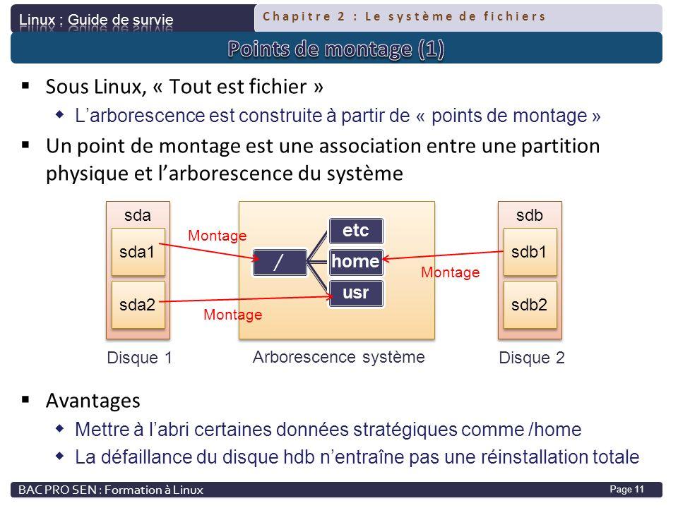 Sous Linux, « Tout est fichier »