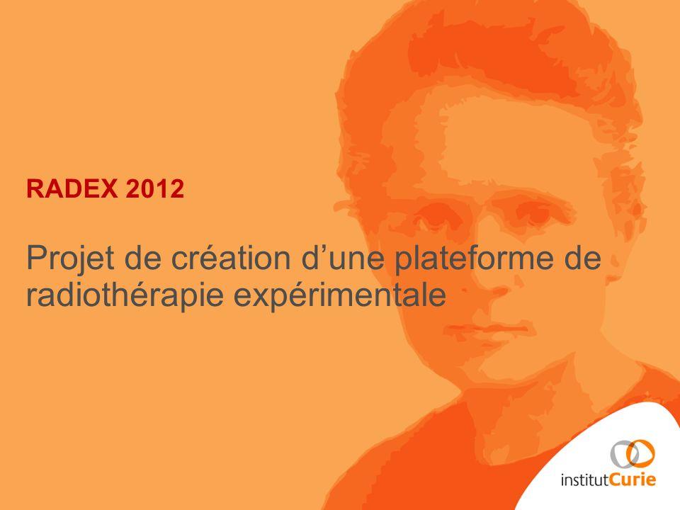 RADEX 2012 Projet de création d'une plateforme de radiothérapie expérimentale