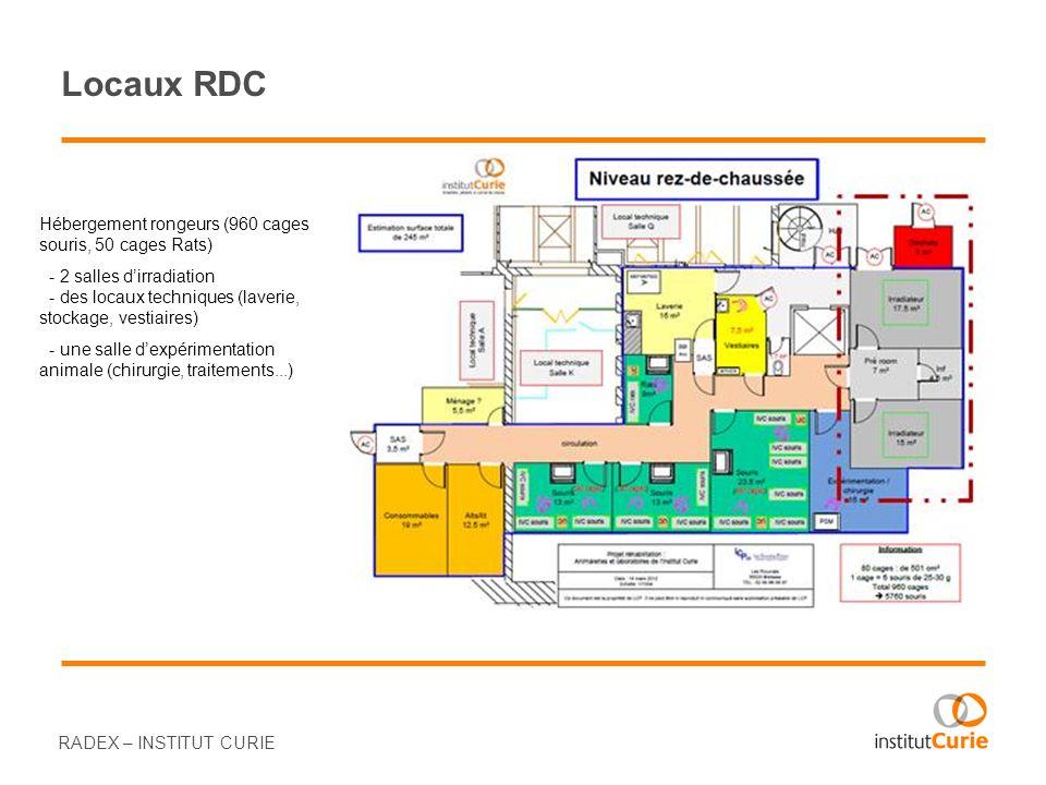 Locaux RDC Hébergement rongeurs (960 cages souris, 50 cages Rats)