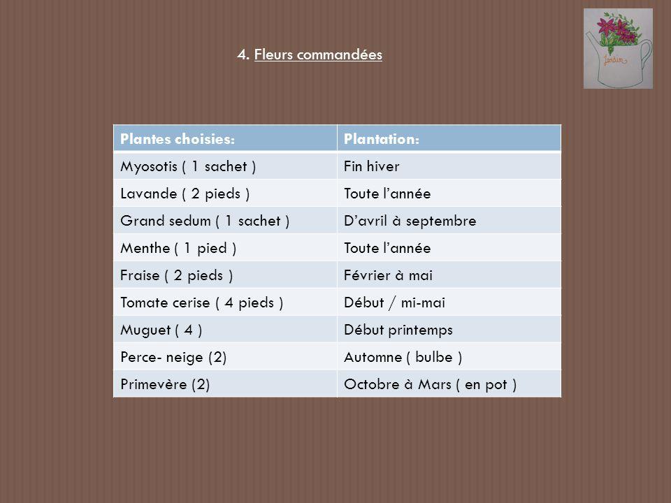 4. Fleurs commandéesPlantes choisies: Plantation: Myosotis ( 1 sachet ) Fin hiver. Lavande ( 2 pieds )