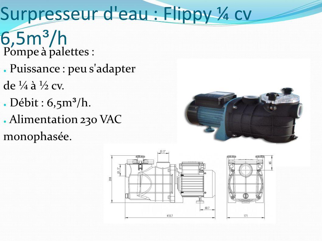 Surpresseur d eau : Flippy ¼ cv 6,5m³/h