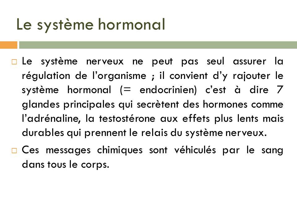 Le système hormonal