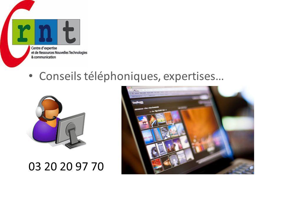 Conseils téléphoniques, expertises…
