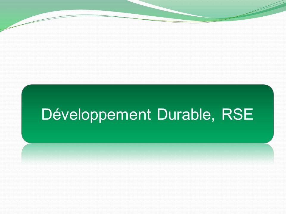 Développement Durable, RSE