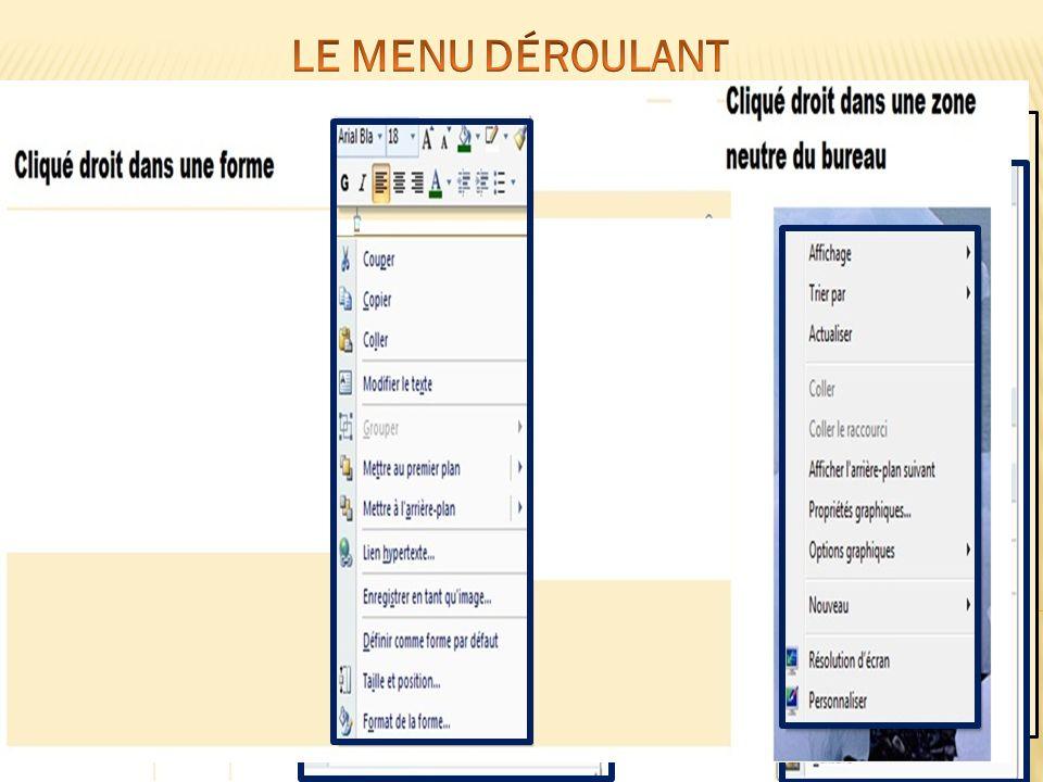 Bouton suivant LE MENU DÉROULANT Exemples de menus déroulants