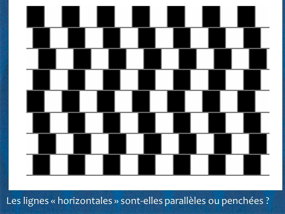 Les lignes « horizontales » sont-elles parallèles ou penchées