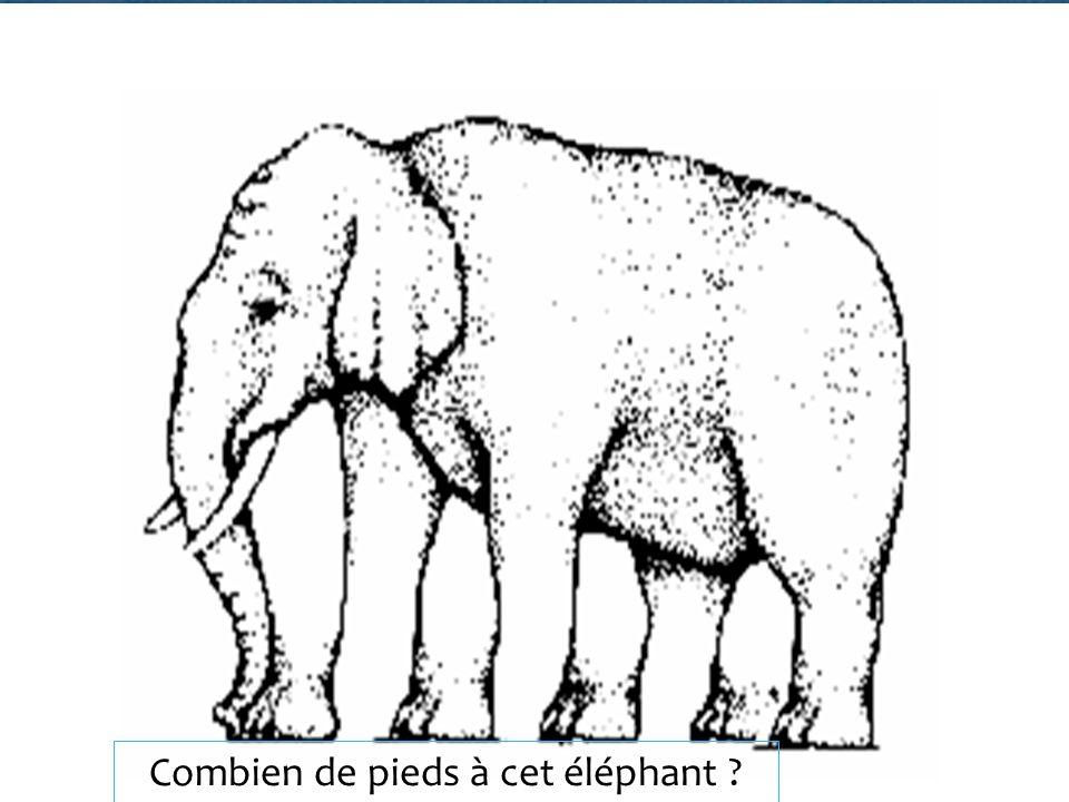 Combien de pieds à cet éléphant