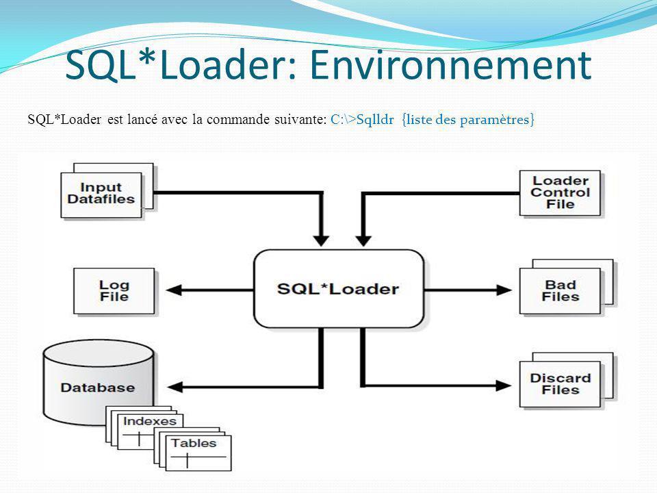 SQL*Loader: Environnement