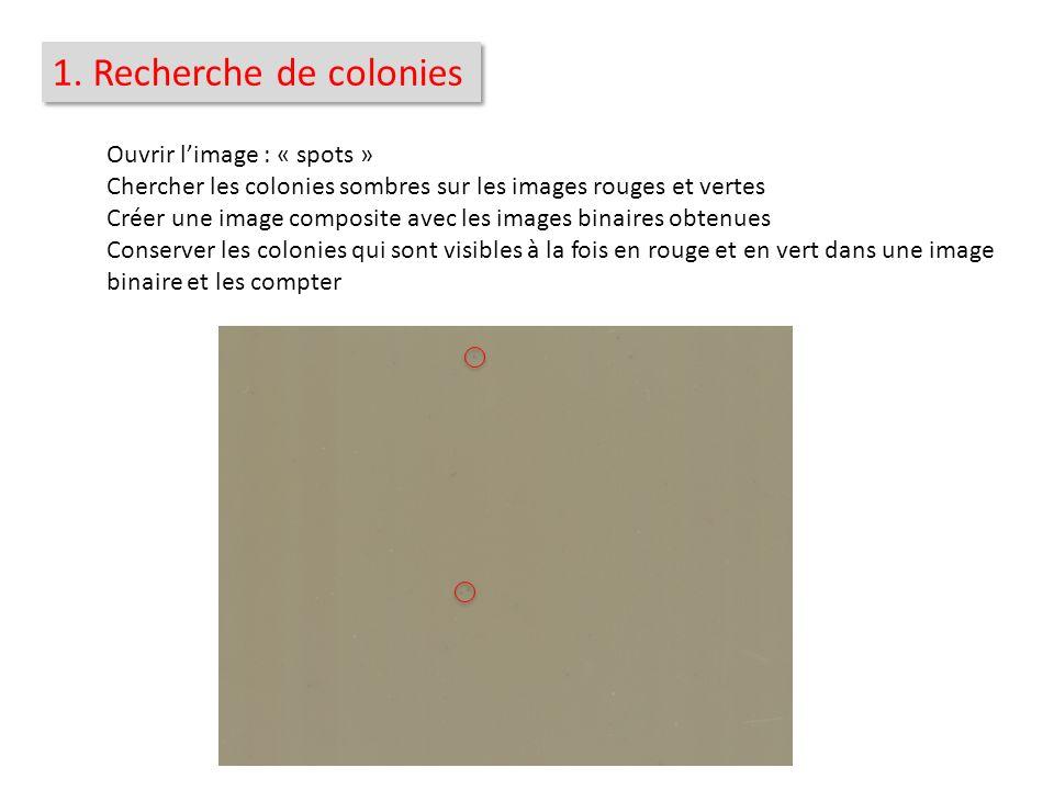 1. Recherche de colonies Ouvrir l'image : « spots »