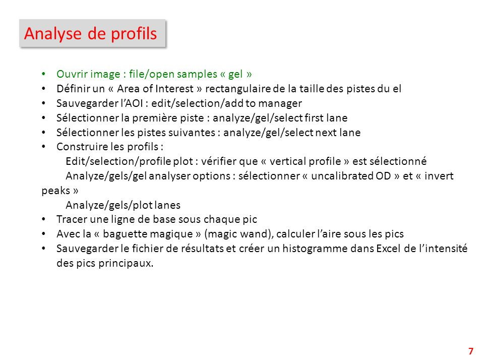 Analyse de profils Ouvrir image : file/open samples « gel »