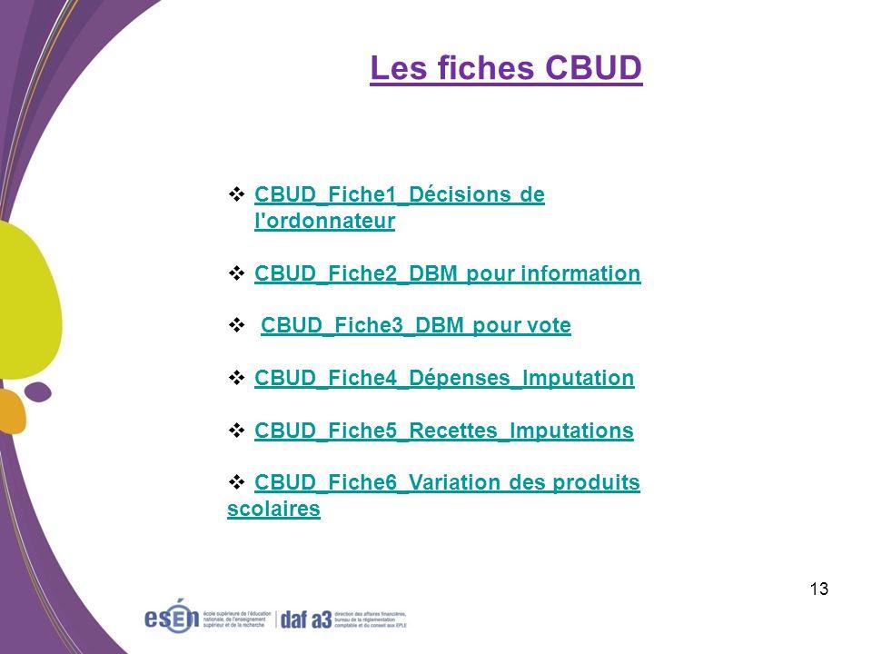 Les fiches CBUD CBUD_Fiche1_Décisions de l ordonnateur