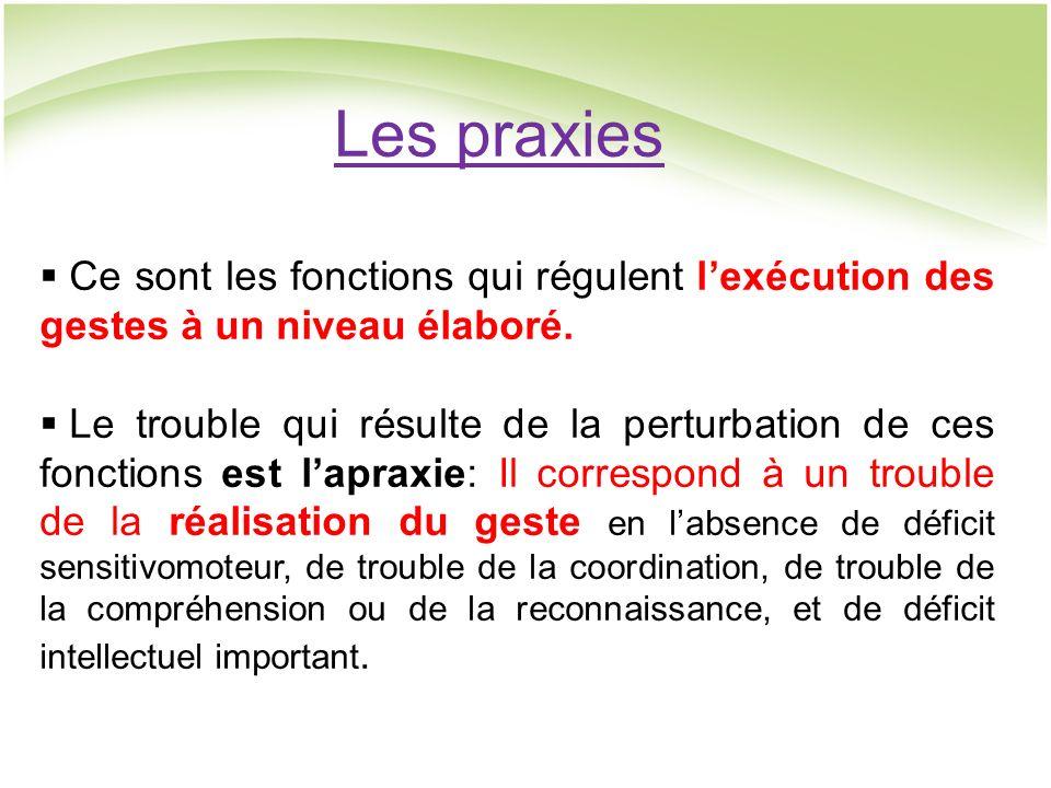 Les praxies Ce sont les fonctions qui régulent l'exécution des gestes à un niveau élaboré.