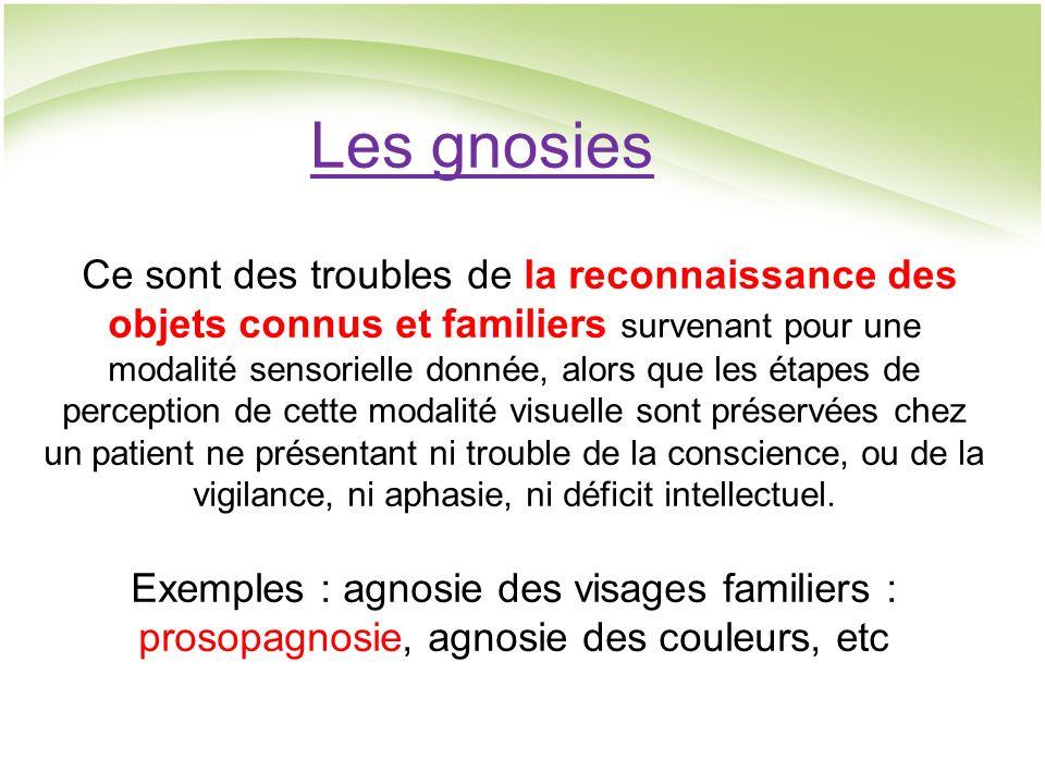 Les gnosies