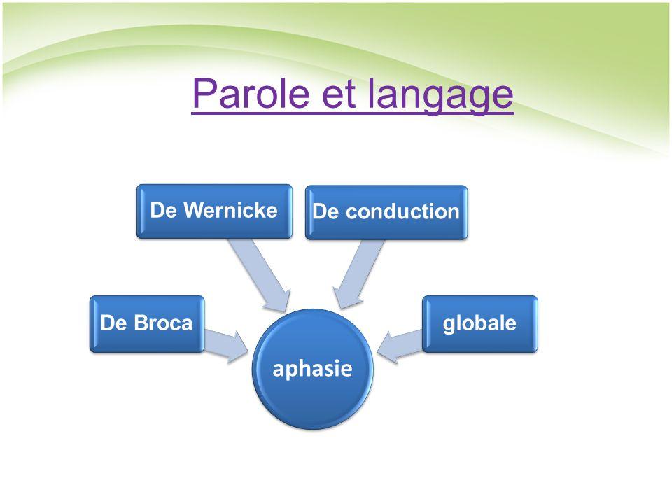 Parole et langage aphasie De Broca De Wernicke De conduction globale