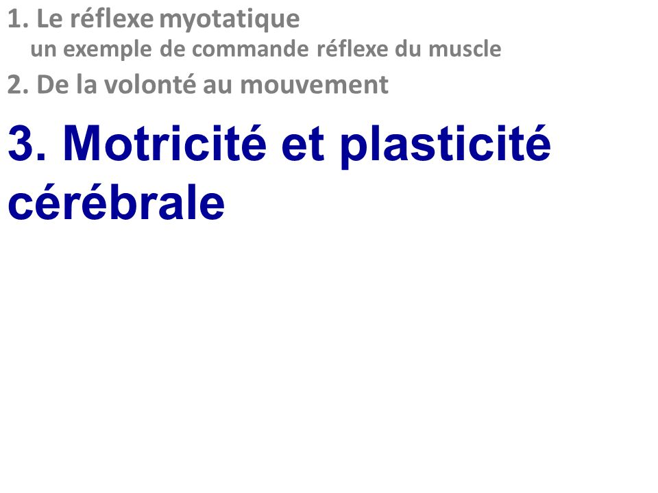 3. Motricité et plasticité cérébrale