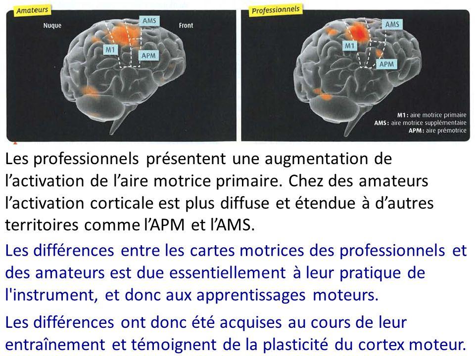 Les professionnels présentent une augmentation de l'activation de l'aire motrice primaire. Chez des amateurs l'activation corticale est plus diffuse et étendue à d'autres territoires comme l'APM et l'AMS.