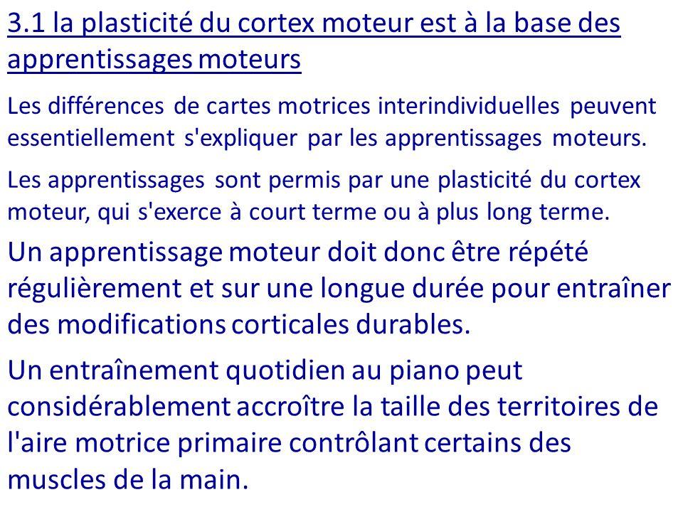 3.1 la plasticité du cortex moteur est à la base des apprentissages moteurs