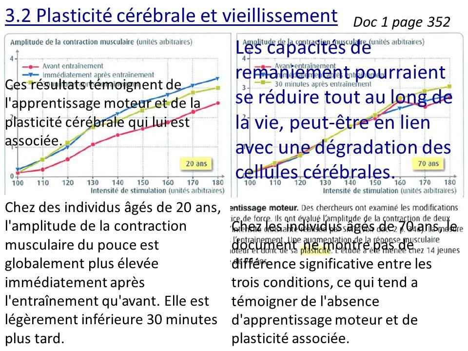 3.2 Plasticité cérébrale et vieillissement