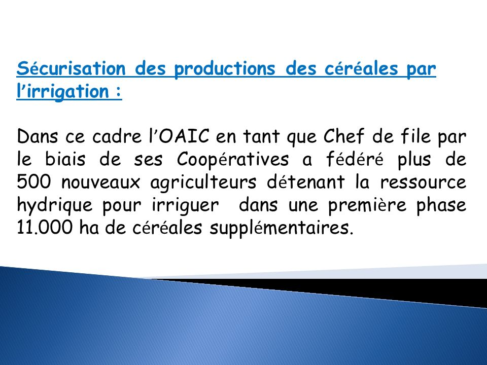 Sécurisation des productions des céréales par l'irrigation :