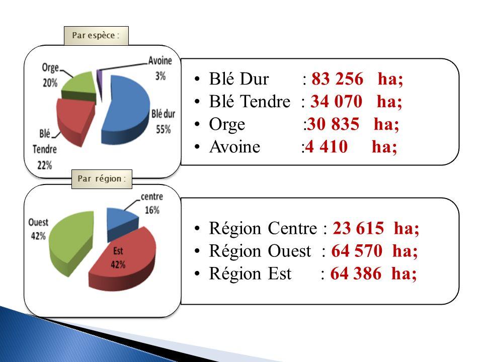 Blé Dur : 83 256 ha; Blé Tendre : 34 070 ha; Orge :30 835 ha;
