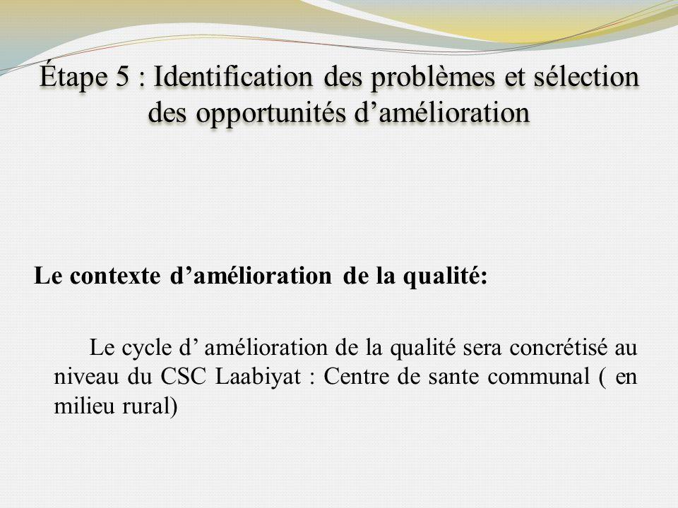 Étape 5 : Identification des problèmes et sélection des opportunités d'amélioration