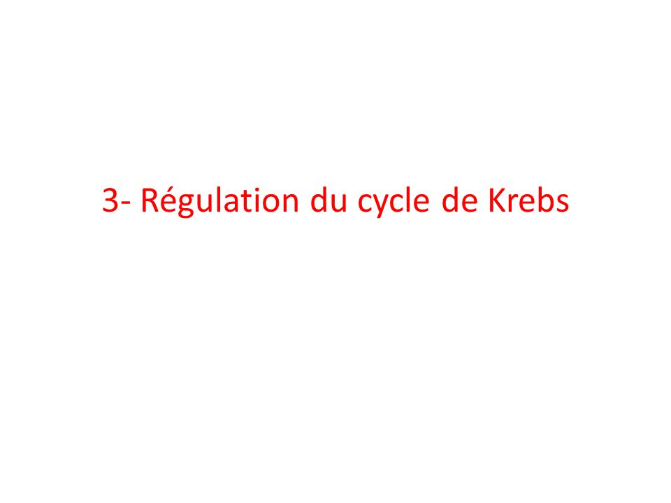 3- Régulation du cycle de Krebs