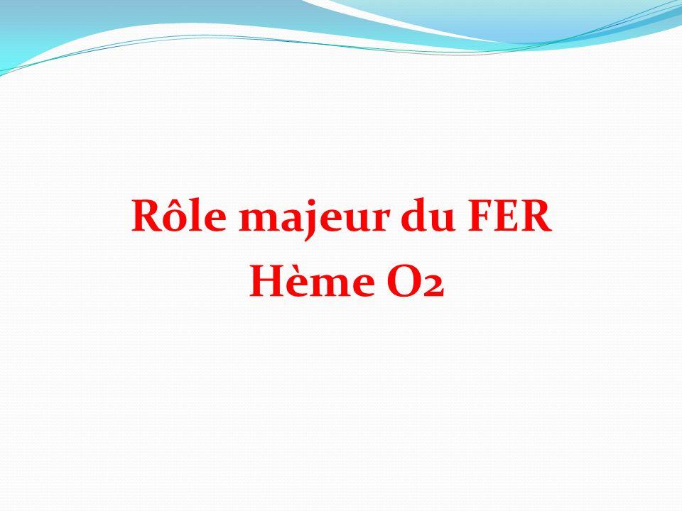 Rôle majeur du FER Hème O2