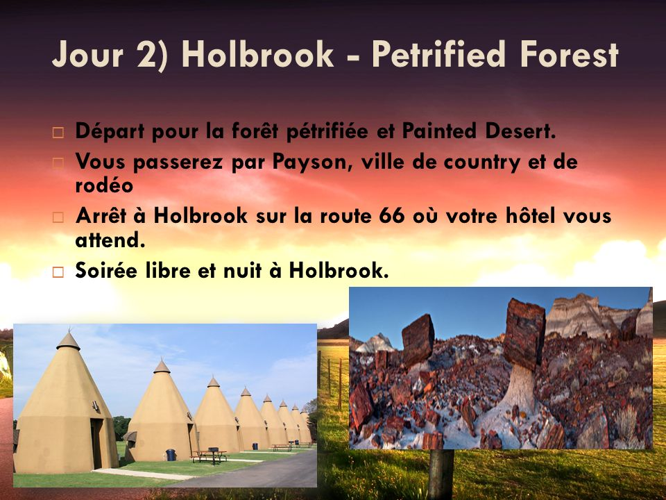Jour 2) Holbrook - Petrified Forest