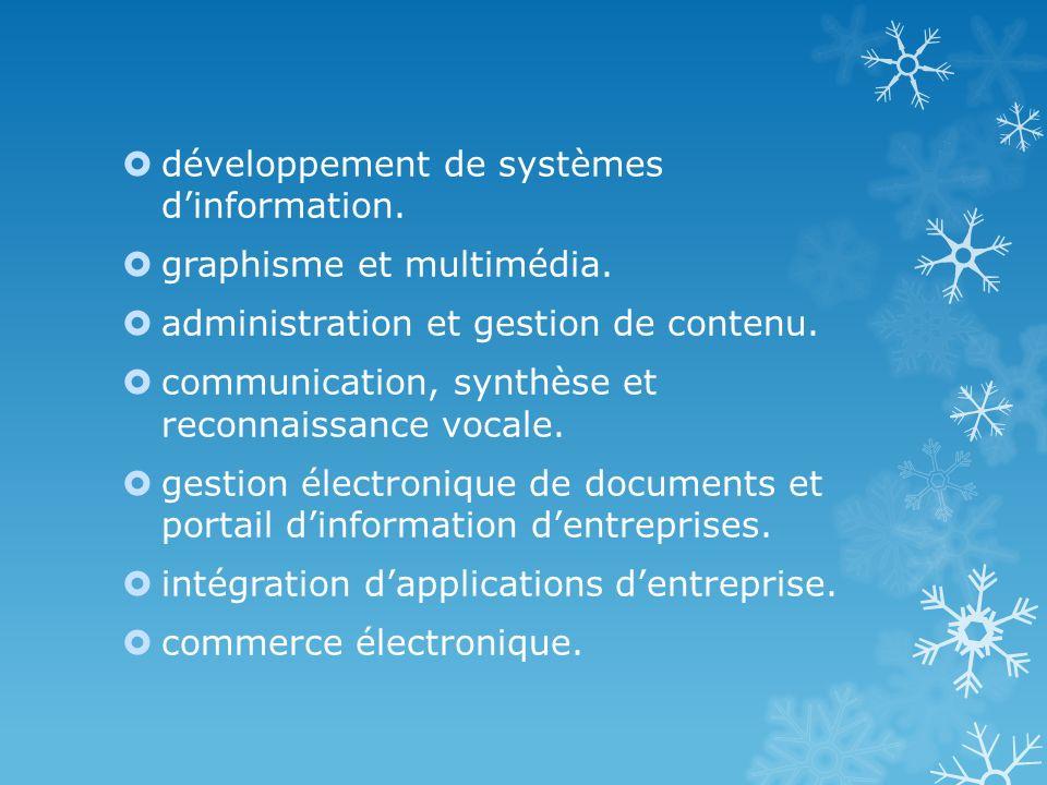 développement de systèmes d'information.