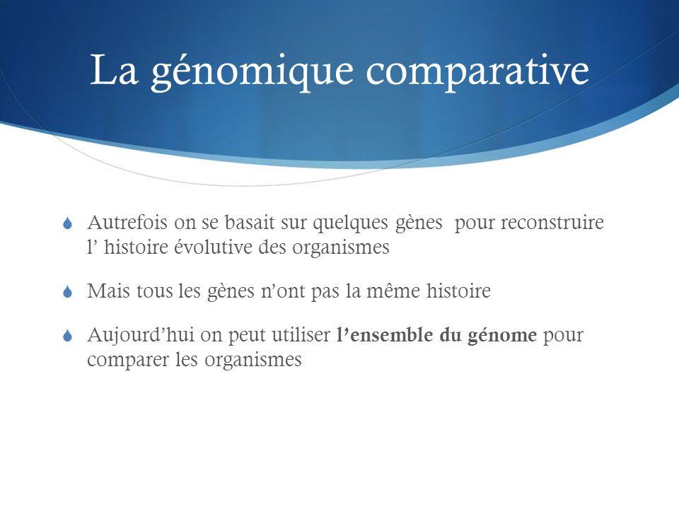 La génomique comparative
