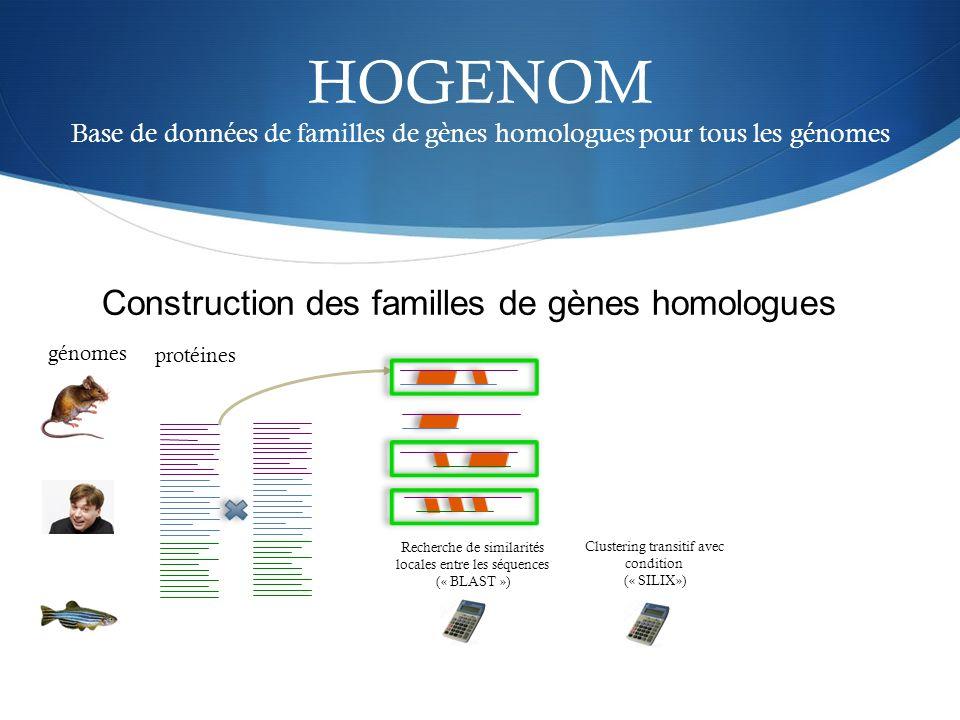 HOGENOM Base de données de familles de gènes homologues pour tous les génomes