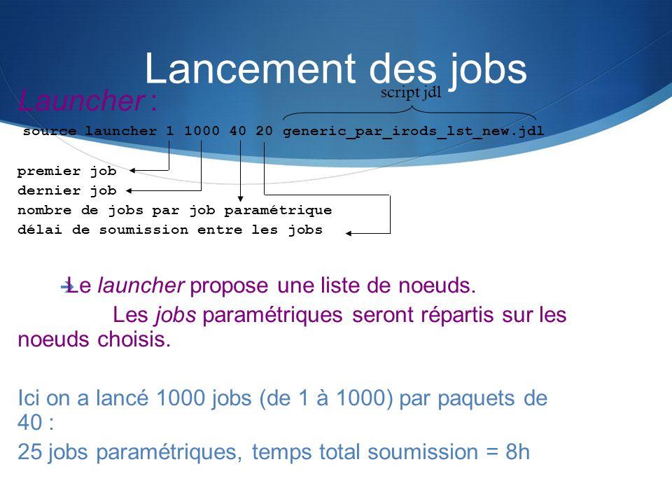 Lancement des jobs Launcher : Le launcher propose une liste de noeuds.