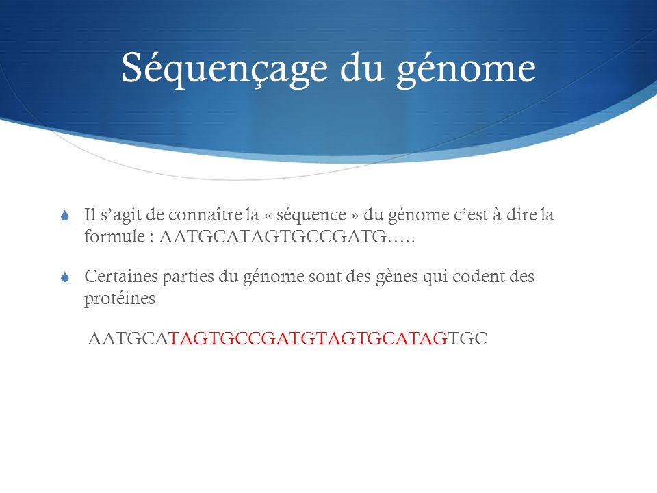 Séquençage du génome Il s'agit de connaître la « séquence » du génome c'est à dire la formule : AATGCATAGTGCCGATG…..