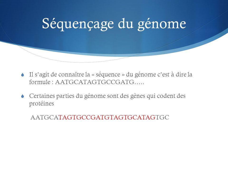 Séquençage du génomeIl s'agit de connaître la « séquence » du génome c'est à dire la formule : AATGCATAGTGCCGATG…..