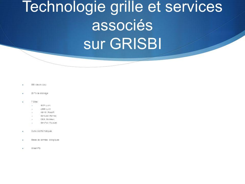 Technologie grille et services associés sur GRISBI