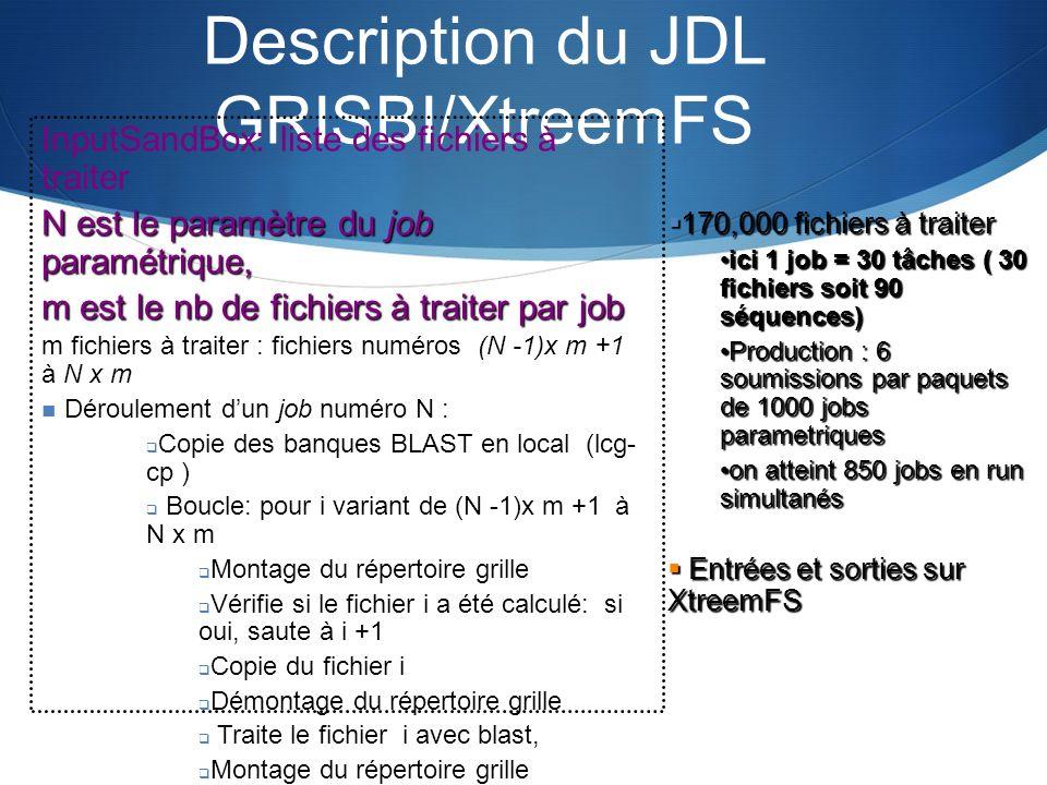 Description du JDL GRISBI/XtreemFS
