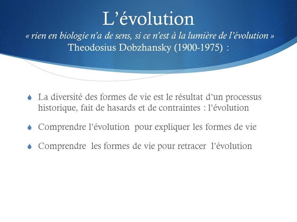 L'évolution « rien en biologie n'a de sens, si ce n'est à la lumière de l'évolution » Theodosius Dobzhansky (1900-1975) :