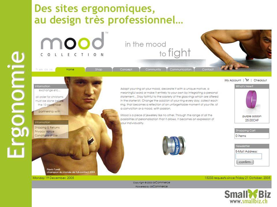 Des sites ergonomiques, au design très professionnel…