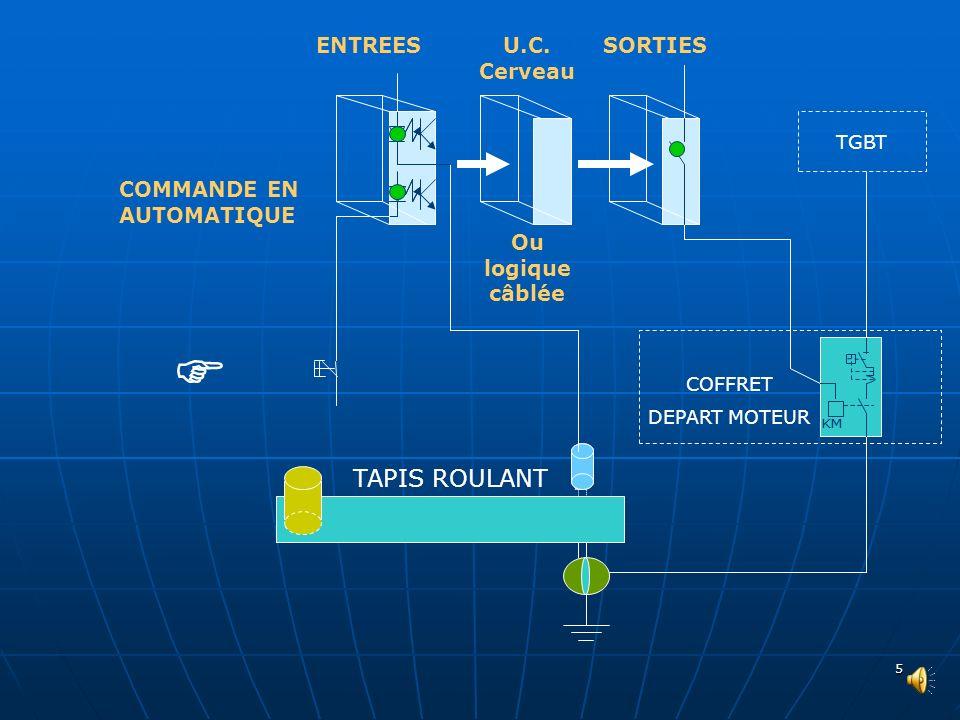  TAPIS ROULANT ENTREES U.C. Cerveau SORTIES COMMANDE EN AUTOMATIQUE