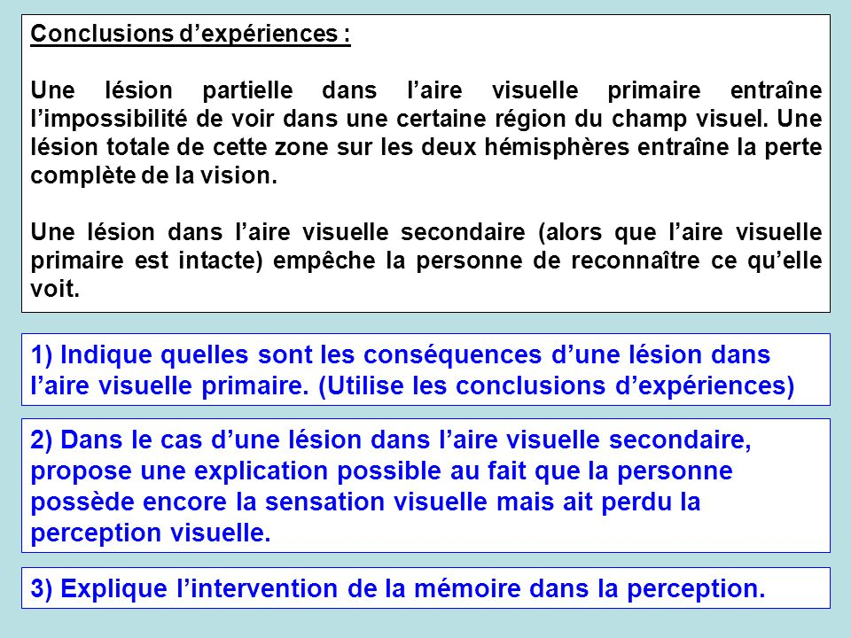 3) Explique l'intervention de la mémoire dans la perception.